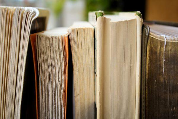 Un pò di letteratura inglese: tra picaresca, fiaba e romanzo di formazione