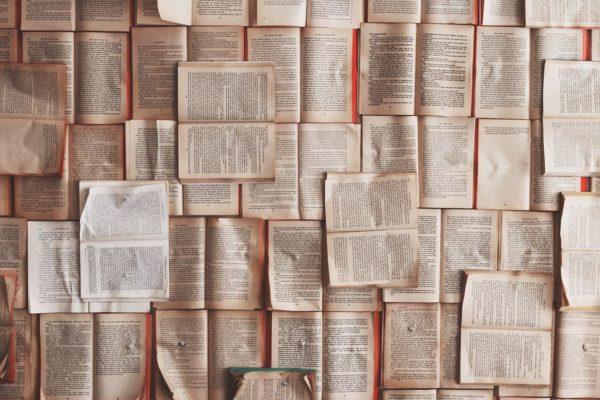 Unamuno e Prus: qualche confronto narratologico