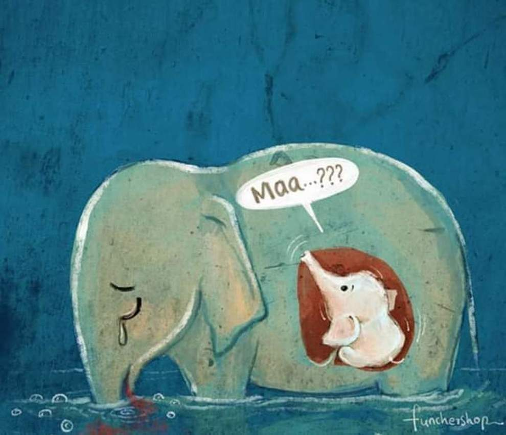 Solo animali - poesia di Arianna Taddeo