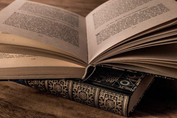 L'amante di Lady Chatterley: Lawrence e i linguaggi della passione