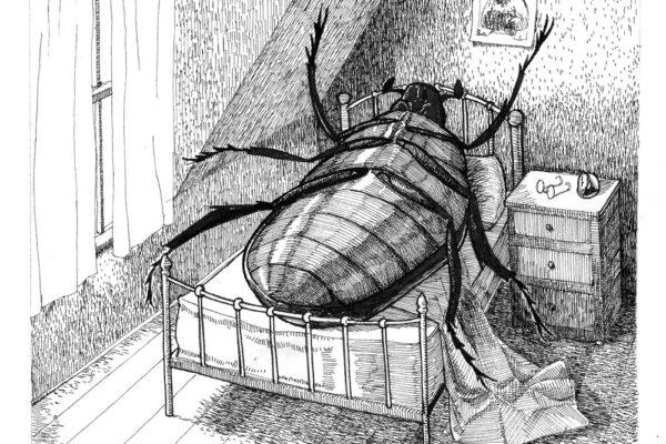 Gregor Samsa e il rifiuto della scoperta