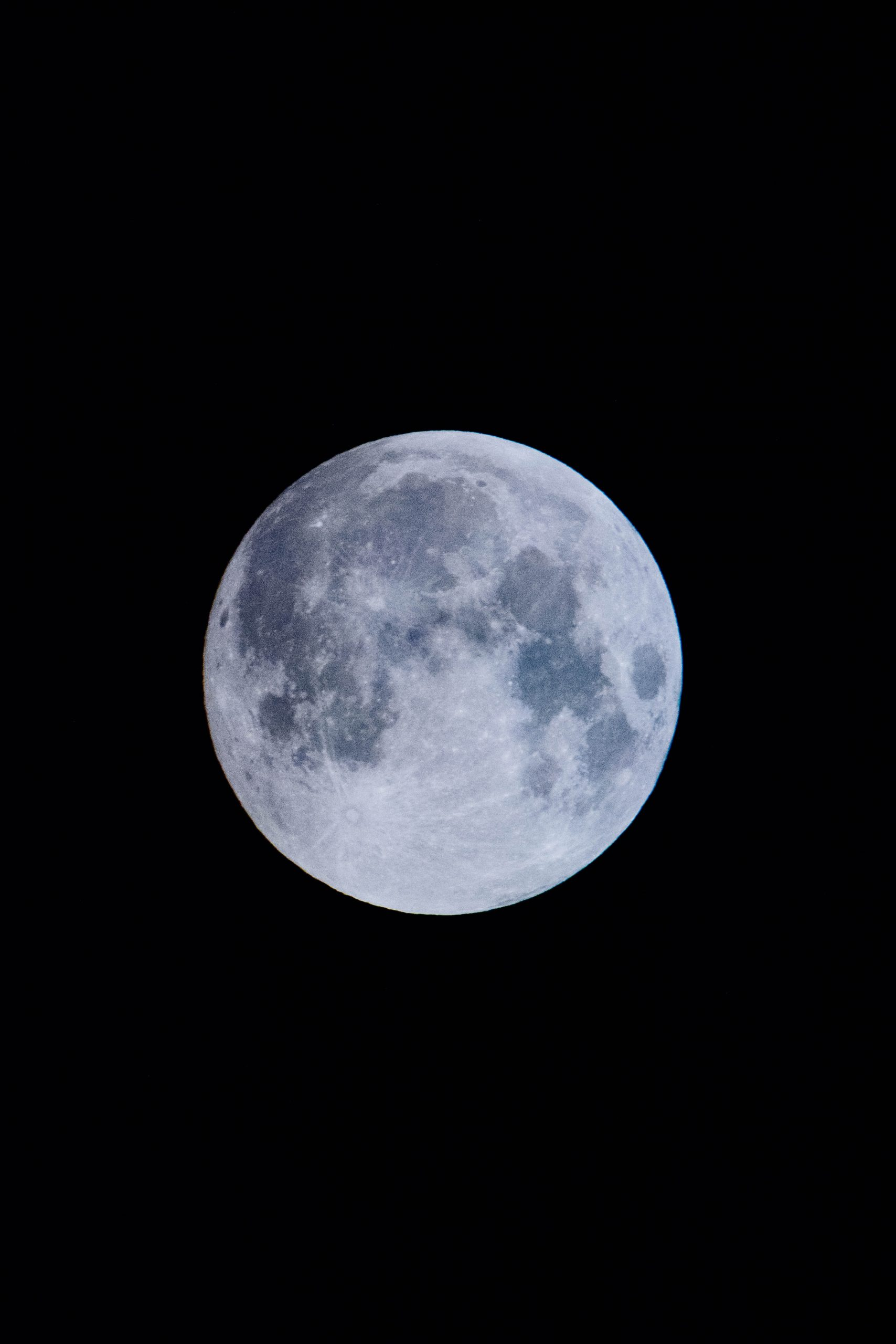 Come la luna piena